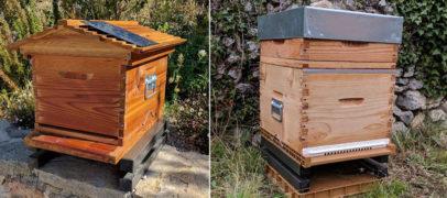 Des ruches connectées : suivez-les en cas de vol